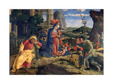 The Adoration of the Shepherds, C1450 Giclee Print by Andrea Mantegna