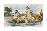 Washing, C1845 Giclee Print by Benjamin Waterhouse Hawkins