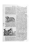Mythical Creatures, 1675 Giclee Print by Athanasius Kircher