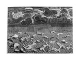 Scene of the Deluge, 1675 Giclee Print by Athanasius Kircher