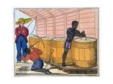 The Blackman's Lament on How to Make Sugar, 1813 Giclee Print by Amelia Alderson Opie
