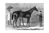 Spinaway, Winner of the Oaks, 1875 Giclee Print by  Crane