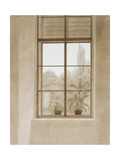 Window Looking over the Park, 1810-1811 Giclee Print by Caspar David Friedrich