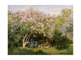 Lilac in the Sun, 1872-1873 Giclee Print by Claude Monet
