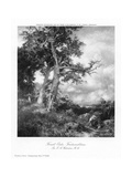 Forest Oaks, Fontainebleau, 1908 Giclee Print by Ernest Albert Waterlow