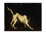 A Dog, 17th Century Giclee Print by Frans Snyders