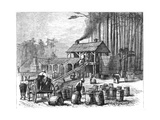 Turpentine Distillery, North Carolina, 1870 Giclee Print by Edwin Austin Abbey
