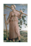 Allegory of Autumn, 15th Century Giclée-Druck von Francesco del Cossa