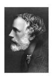 George Meredith, English Novelist and Poet, C1909 Giclee Print by Frederick Hollyer