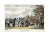 Zoological Gardens, Regent's Park, London, 1835 Giclee Print by George Scharf