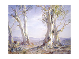 White Gums in Morning Light, 1961 Giclée-Druck von Hans Heysen