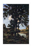 Oak Trees in Chateaunenard, France, 1926 Giclee Print by Henri-Joseph Harpignies