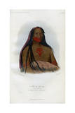 Mah-To-Toh-Pa, (The Four Bear), 2nd Chief of the Mandans, 1848 Giclee Print by  Harris