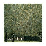 Gustav Klimt - Park, 1910 Digitálně vytištěná reprodukce