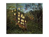 In a Tropical Forest. Struggle Between Tiger and Bull, 1908-1909 Giclee Print by Henri Rousseau