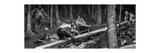 The Wood Cutters, C1880-1882 Giclée-Druck von Hubert von Herkomer
