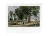 Yale College, New Haven, Connecticut, USA, 1838 Giclee Print by J Sands