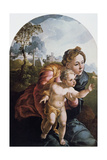 The Virgin and Child, 16th Century Giclee Print by Jan van Scorel