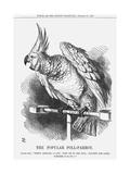 The Popular Poll-Parrot, 1866 Giclee Print by John Tenniel