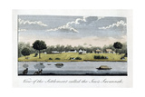 View of the Settlement Called the Jew's Savannah, 1813 Giclee Print by John Gabriel Stedman