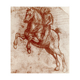 Study of a Knight, 1913 Giclee Print by  Leonardo da Vinci
