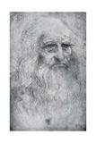 Self Portrait of Leonardo Da Vinci, C1512-1515 Giclee Print by  Leonardo da Vinci