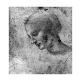Study of the Head of the Madonna, 15th Century Giclee Print by  Leonardo da Vinci