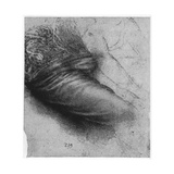 Study of a Garment for St Anne, 1503-1517 Giclee Print by  Leonardo da Vinci
