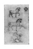 Studies for the Trivulzio Monument, C1508 Giclée-Druck von  Leonardo da Vinci
