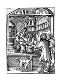 Druggist, 16th Century Giclee Print by Jost Amman