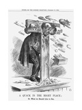 A Quack in the Right Place, 1864 Giclee Print by John Tenniel