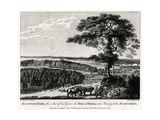 Hackwood Park, the Seat of His Grace the Duke of Bolton, Near Basingstoke, Hampshire, 1775 Giclee Print by Michael Angelo Rooker