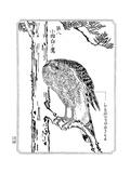 A Hawk, 1898 Giclee Print by Kawanabe Kyosai