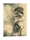Anatomical Sketch; Two Studies of a Human Skull, C1489 Giclee Print by  Leonardo da Vinci
