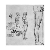 Nude Studies for 'The Battle of Anghiari, C1503-1505 Giclee Print by  Leonardo da Vinci