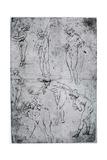 Studies for the Adoration of the Magi, 15th Century Giclee Print by  Leonardo da Vinci