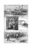 The Sugar Industry, Richmond River, New South Wales, Australia, 1886 Giclee Print by JR Ashton