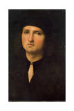 Portrait of a Young Man, Between 1495 and 1500 Giclee Print by  Perugino