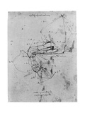 Study in Proportion of a Horse's Leg, Late 15th or Early 16th Century Giclee Print by  Leonardo da Vinci