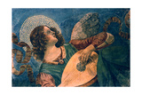 An Angel Playing the Lute, 15th Century Giclee Print by Melozzo Da Forli