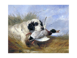 Dog with Wild Duck, 19th Century Giclee Print by Richard Ansdell