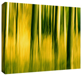 camera shake 2 Gallery-Wrapped Canvas Stretched Canvas Print