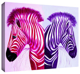 zebras pinkpurple Gallery-Wrapped Canvas Stretched Canvas Print