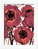 Burgundy Anemone Prints by Natasha Wescoat