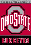 NCAA Ohio State Buckeyes 2-Sided House Banner Flag