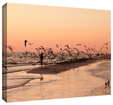 more Gallery-Wrapped Canvas Stretched Canvas Print