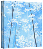Spring Forest 1 Gallery-Wrapped Canvas Stretched Canvas Print