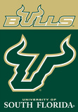 NCAA South Florida Bulls 2-Sided House Banner Flag