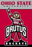 NCAA Ohio State Buckeyes 2-Sided House Banner Bandera