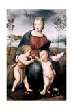 Madonna Del Cardellino, 1507 Impression giclée par  Raphael